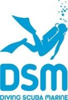Diving scuba marine